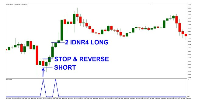 IDNR4 grafico